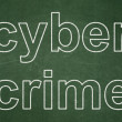 Security concept: Cyber Crime on chalkboard background — Photo