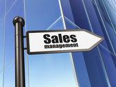 Advertising concept: sign Sales Management on Building background — ストック写真