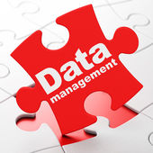 Data concept: Data Management on puzzle background — Stock Photo