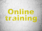 Education concept: Online Training on wall background — Foto de Stock