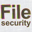 Stock Photo: Safety concept: File Security on fabric texture background