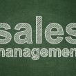 Stock Photo: Marketing concept: Sales Management on chalkboard background