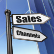 Stock Photo: Marketing concept: sign Sales Channels on Building background