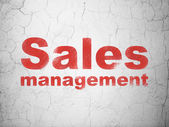 Marketing concept: Sales Management on wall background — Stock Photo