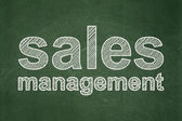 Marketing concept: Sales Management on chalkboard background — Stock Photo