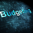 Business concept: Budgeting on digital background — Stock Photo