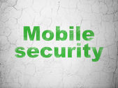 Privacy concept: Mobile Security on wall background — Stockfoto