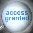 Stock Photo: Protection concept: Access Granted with optical glass