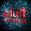 Education concept: Adult Education on digital background — Stock Photo #35938961