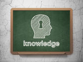 Education concept: Head With Keyhole and Knowledge — Zdjęcie stockowe