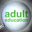 Stock Photo: Education concept: Adult Education with optical glass