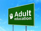 Education concept: Adult Education and Head With Finance Symbol on road sign background — Foto Stock