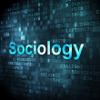 Stock Photo: Education concept: Sociology on digital background