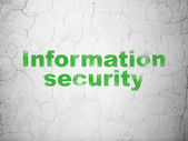 Security concept: Information Security on wall background — ストック写真