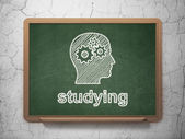 Education concept: Head With Gears and Studying on chalkboard background — Stock fotografie