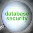 Safety concept: Database Security with optical glass — Stock Photo
