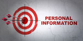 Security concept: target and Personal Information on wall background — Foto de Stock