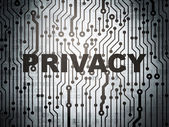 Safety concept: circuit board with Privacy — Stock Photo