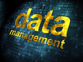 Data concept: Data Management on digital background — Stock Photo