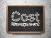 Finance concept: Cost Management on chalkboard background — Photo