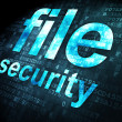 Security concept: File Security on digital background — Stockfoto