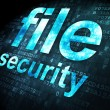Security concept: File Security on digital background — Photo