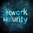 Privacy concept: Network Security on digital background — Photo