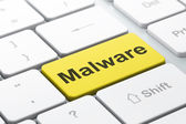 Concepto de seguridad: malware sobre fondo de teclado de computadora — Foto de Stock