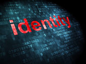 Privacy concept: Identity on digital background — Foto Stock