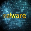Security concept: Malware on digital background — Stock Photo #36938929