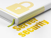 Security concept: book Closed Padlock, Server Security on white background — 图库照片