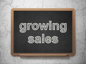 Business concept: Growing Sales on chalkboard background — Foto de Stock