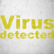 Privacy concept: Virus Detected on wall background — Stock Photo