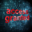 Stock Photo: Privacy concept: Access Granted on digital background