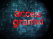 Privacy concept: Access Granted on digital background — Stock Photo