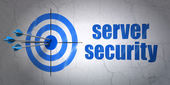 Safety concept: target and Server Security on wall background — Stock Photo