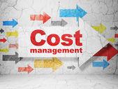 事業コンセプト: グランジ壁背景にコスト管理と矢印 — ストック写真