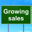 Finance concept: Growing Sales on road sign background — Stock Photo #37604357