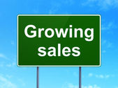 Finance concept: Growing Sales on road sign background — Zdjęcie stockowe