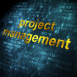 Business concept: Project Management on digital background — Stock Photo #38240407
