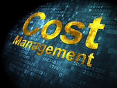 Finance concept: Cost Management on digital background — Stock Photo