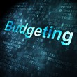 Business concept: Budgeting on digital background — Stock Photo #38390125