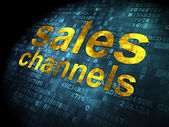 Marketing concept: Sales Channels on digital background — Stock Photo