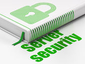 Safety concept: book Closed Padlock, Server Security on white background — Стоковое фото
