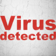 Stock Photo: Privacy concept: Virus Detected on wall background