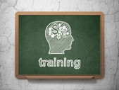 Education concept: Head With Finance Symbol and Training on chalkboard background — Stock fotografie