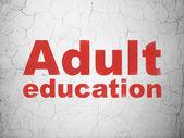 教育の概念: 壁の背景に成人教育 — ストック写真