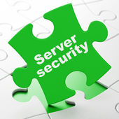 Security concept: Server Security on puzzle background — Stockfoto