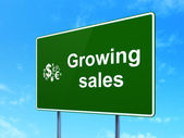 Finance concept: Growing Sales and Finance Symbol on road sign background — Stock Photo