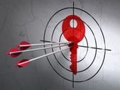 Protection concept: arrows in Key target on wall background — Stock Photo